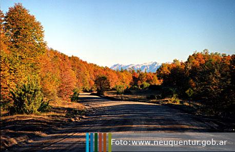 Villa La Angostura Argentina Caba 241 As La Gu 237 A De